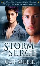 StormSurge_3